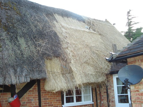 Thatched Cottage and Garden, Swan Cottage was in need of a lot of care and attention when we arrived