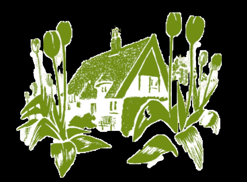 green cottage no background