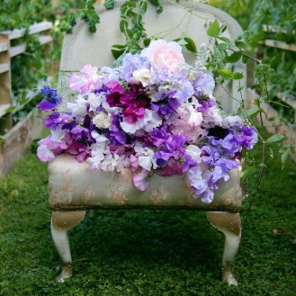 Seasonal Flowers, Summer at Swan Cottage Flower Farm
