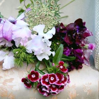 Sweet peas, Wild Carrot, Sweet William.... Scented Seasonal Flowers, Summer at Swan Cottage Flowers