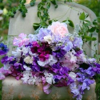 Scented Early Summer, British Seasonal Flowers Sweetpeas and David Austin Roses