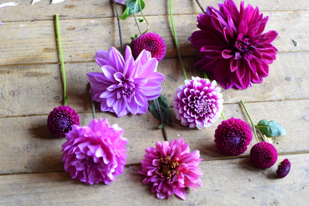 Purple Berry Colours perfect for Autumn Weddings are coming through now!