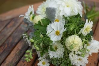 Ammi, Cosmos, Geranium, Dahlias Seasonal Flowers from Swan Cottage