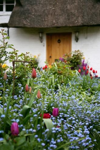 Spring at Swan Cottage