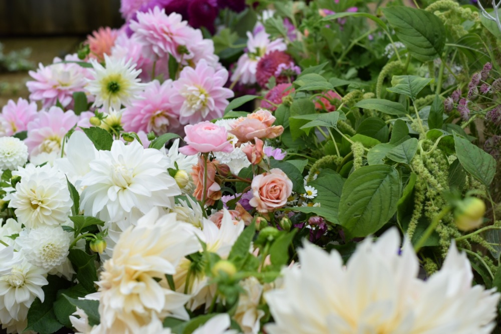 Flowers picked at their absolute best for our DIY Flower Buckets