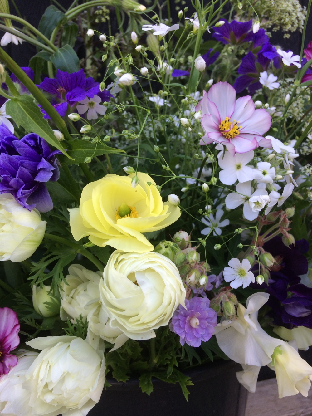 Ranunculus or Persian Buttercups, Gerainum, Cosmos, Gyp, Sweetpeas, Cow parsley, the British Flowers of May, perfect for a Spring Wedding