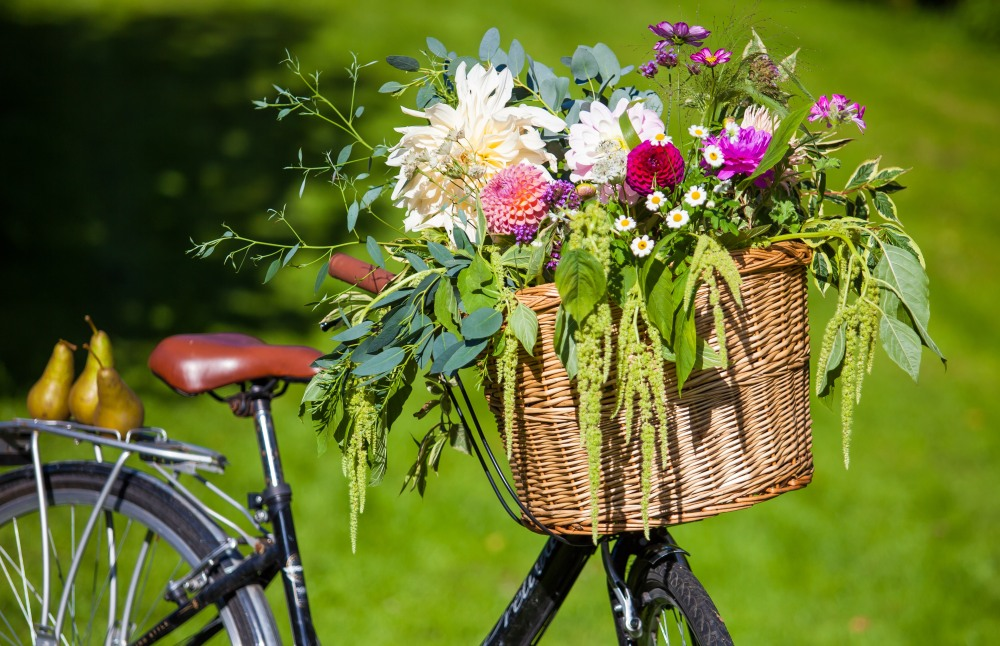 A bicycle basket brimming with British Flowers at Sophie and Ed's Wedding, DIY Flowers arranged by family friend Hilly