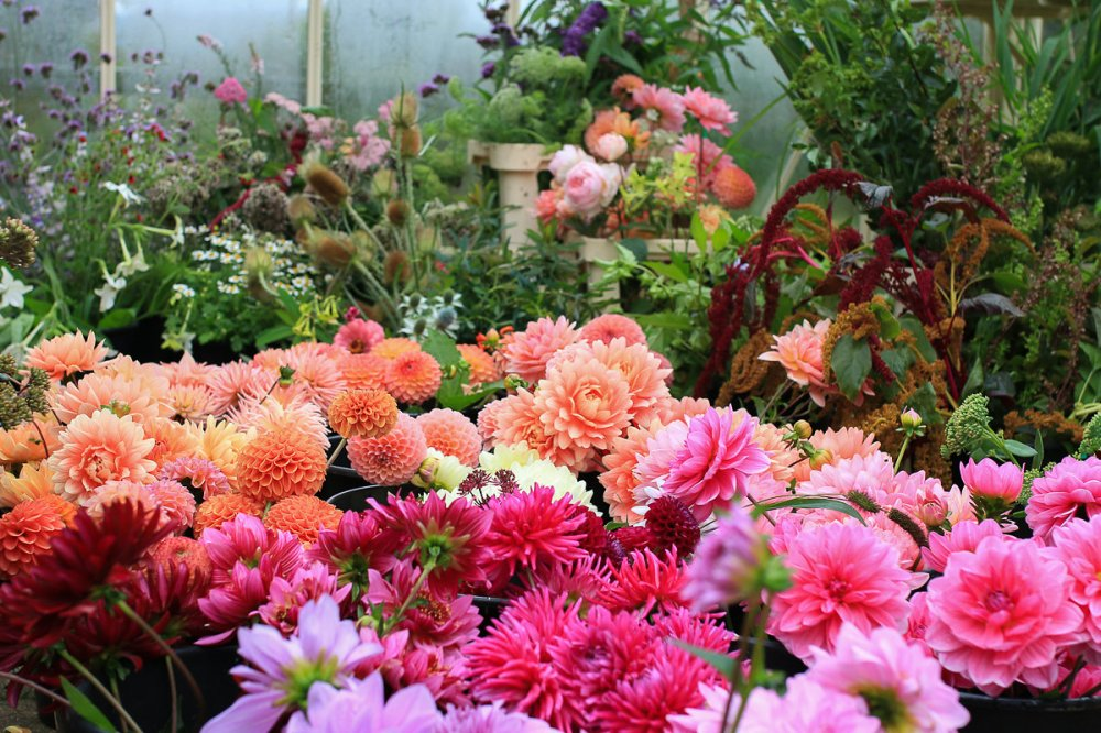 Wedding and Event Flowers Buckinghamshire