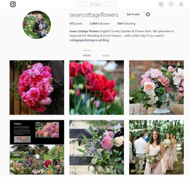 Swan Cottage Flowers Instagram Account, A window into our world!