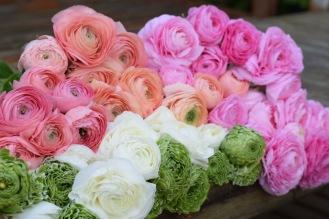 British Flower Farm, DIY Flowers to arrange yourself, Local and Seasonal