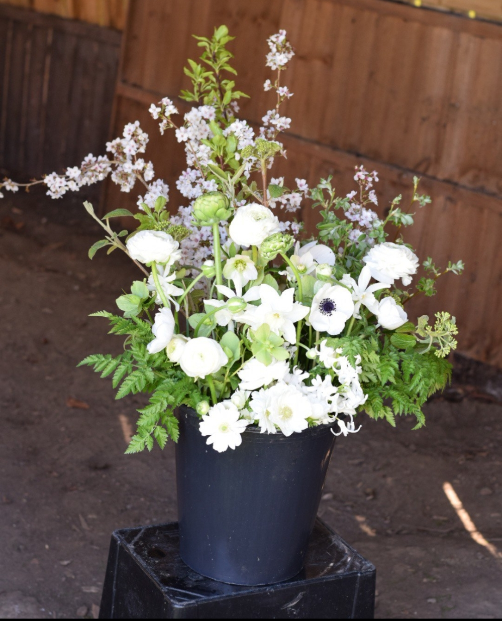 How to Condition Flowers, place stems immediately they are cut into deep tepid water and move to a cool dark place , Swan Cottage Flowers, Local Seasonal British Flowers